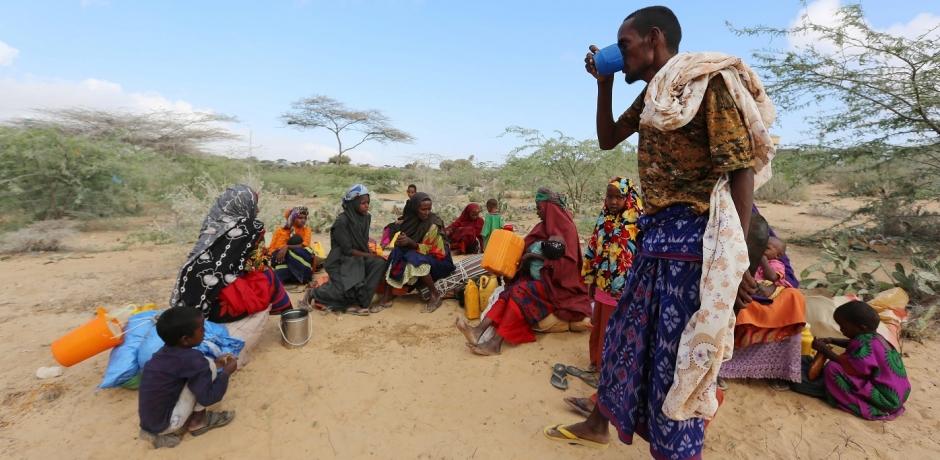 Crise alimentaire en Afrique, comment répondre à l'urgence ?
