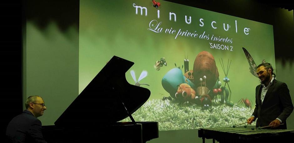 """""""Minuscule"""", ciné-concert familial en tournée au Maroc."""
