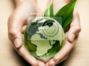 COP21: des projets écolo au secours de l'économie en Afrique