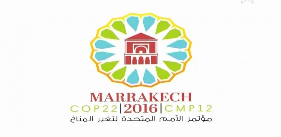 COP 22 : quid du secteur privé?