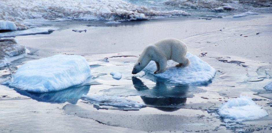 L'Arctique continue de fondre!