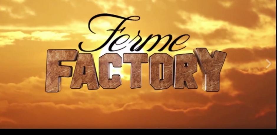 Ferme Factory, retour à la terre au Sénégal
