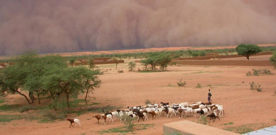 Sahel : état d'alerte générale.