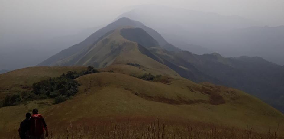 Guinée: Menace sur les Monts Nimba